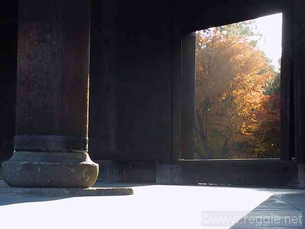 Leaves through entrance gate, Nanzenji Temple, Kyoto, Japan, photo