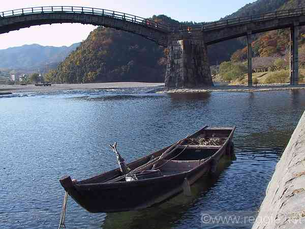 Cormorant fishing boat