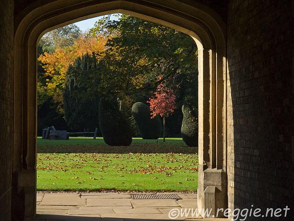 Autumn and evergreen trees, Battersea II, III scupltures, Second court, Jesus College, Cambridge, England