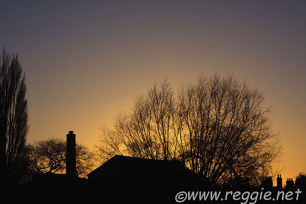 Sunset behind the Mill Chimney and trees