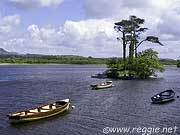 Lough Gill and boats, Co. Sligo, Ireland, photo