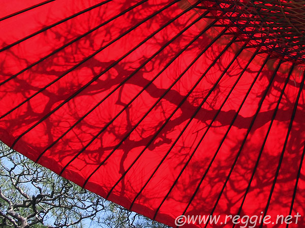Umbrella Images, Stock Pictures, Royalty Free Umbrella Photos And