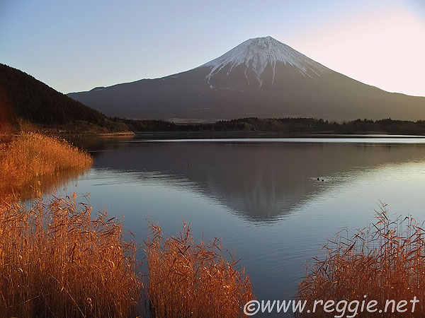 http://www.reggie.net/photos/japan/shizuoka-ken/lake_tanukiko/2636353_fuji_reflection-600.jpg